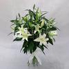 Букет из 9 белых лилий фото