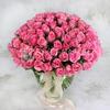 101 розовая кенийская роза фото