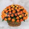 101 оранжевая роза в корзине фото