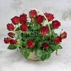 25 красных роз в корзине фото