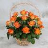 25 оранжевых роз в корзине фото