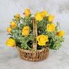 15 желтых роз 40 см. в корзине фото