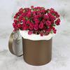 25 малиновых кустовых роз в шляпной коробке фото