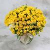 Букет из 51 желтой кустовой розы фото