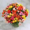 Букет из 51 разноцветной кустовой розы фото