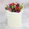 25 разноцветных тюльпанов в шляпной коробке фото