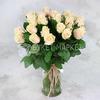 Букет из 25 кремовых роз 60 см. ПМ фото