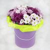 15 разноцветных кустовых хризантем в большой шляпной коробке фото