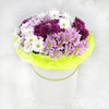Композиция из разноцветных кустовых хризантем в шляпной коробке фото
