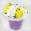 11 кустовых хризантем в шляпной коробке фото