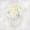 11 белых хризантем в шляпной коробке фото