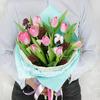 Букет из 9 тюльпанов с хлопком и скимией фото