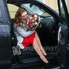 Букет Козерогу из роз, гвоздик и тюльпанов с хлопком фото