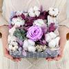 Композиция из роз и эхеверии с декоративными элементами фото