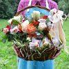 Корзина с розами, фруктами, конфетами и чаем фото